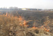 Лише за останню добу рятувальники здійснили 16 виїздів на гасіння трав'яного настилу