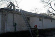 Пожар на территории киевского зоопарка