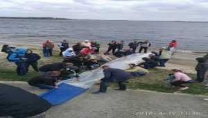 В Каневское водохранилище было запущено 12 тысяч мальков толстолобика. Фото