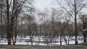 В Киеве презентовали проект капитального ремонта Куреневского парка. Фото