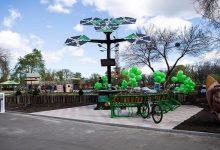 В Киеве все желающие могут заряжать свои гаджеты от smart-дерева. Фото