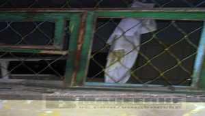 В окупированной Макеевке неизвестные подорвали участок полиции. Фото