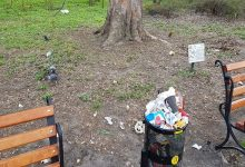 Звалище у столичному ботсаду. Фото