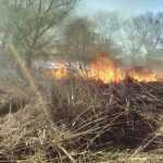 На Київщині знову горів трав'яний настил