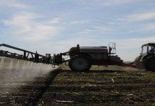 Более 90% площадей засеяно пшеницей и ячменем