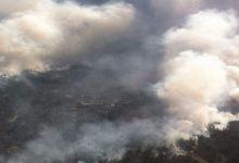 К ликвидации лесного пожара в Херсонской области привлечено 322 спасателя