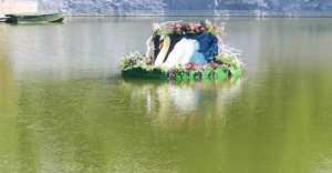 Київзеленбуд створює незвичну красу до Дня Києва. Фото