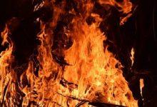 В Херсонской области огонь охватил 20 гектаров леса