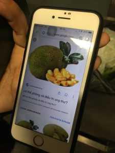В аэропорту Борисполь обнаружили незадекларированные тайские фрукты на сумму более 100 тыс. гривен