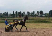 Cьогодні на Київському іподромі проходили справжні кінні перегони
