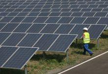 Франция заинтересована в строительстве солнечной электростанции в Чернобыльской зоне