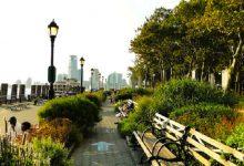 У столиці з'явиться 10 нових зелених зон. Адреси