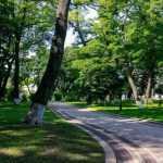 В Киеве обустроят 10 новых зеленых зон (адреса)