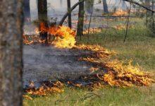 Сегодня в столице ожидается высокий уровень пожарной опасности