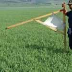 В государственную собственность возвращено более 53 га земель