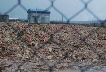 Возле производственных площадок агрохолдинга Комплекс Агромарс обнаружено 230 тонн отходов животного происхождения