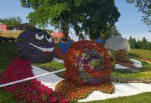 Выставка цветов на Певческом поле продлена на неделю