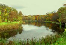 Жители Нивок просят внести изменения в проект благоустройства озер в одноименном парке
