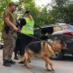В Киеве неизвестные со стрельбой отобрали у мужчины более миллиона гривен