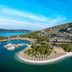 Розкішна Туреччина, Одещина та городні розваги: Куди гайнули політики у відпустку цього літа